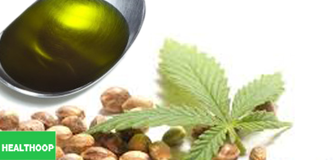 Hemp oil: An essential guide